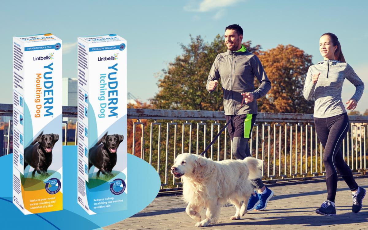 YuDERM. Protecție garantată pentru pielea și blana câinelui tău